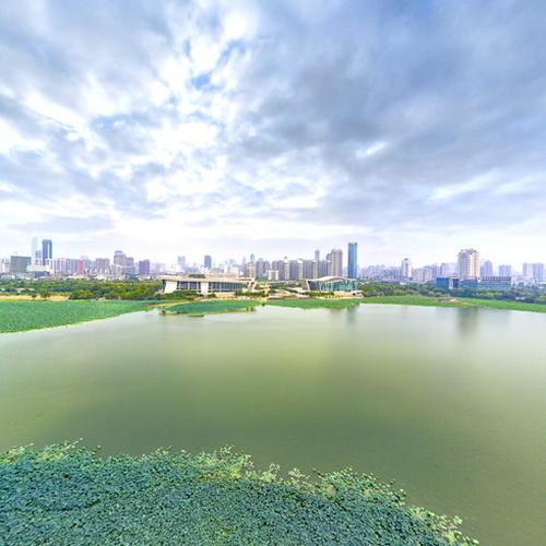武汉月湖景区航拍全景图